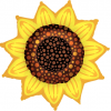 "42"" Sunflower Shape Foil Balloon - Pkg"