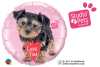 "18"" Studio Pets - Love You Terrier Foil Balloon - Pkg"