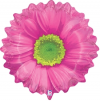 "24"" Bright Blooms Pink Flower Shape Balloon"